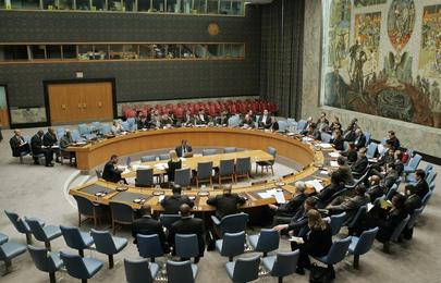 Security Council Urges Haiti Elections No Later Than 7 February