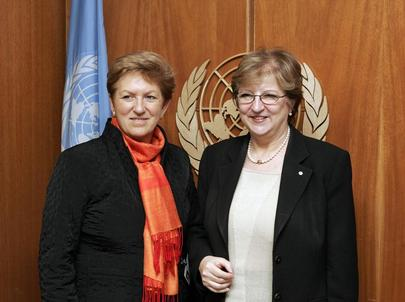 Deputy Secretary-General Meets With Austrian Minister for Health and Women