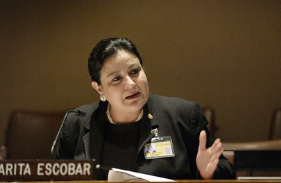 Salvadoreans Living Abroad Vice-Minister of Foreign Affairs Addresses Meeting