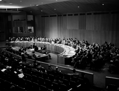 Economic and Social Council of the United Nations