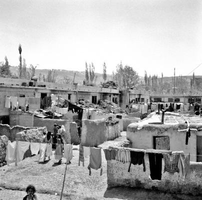 Palestine Arab Refugees
