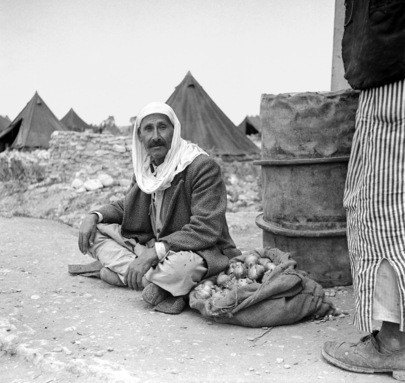 Palestine Refugees in the Middle East