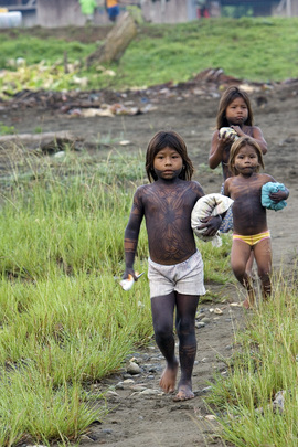 Internally Displaced Indigenous in Colombia