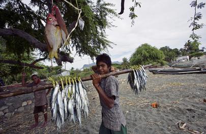 Timor-Leste Fishermen