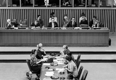 Special Political Committee Begins Consideration of Apartheid Policies of South African Government