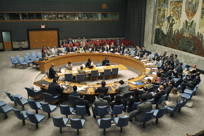 Security Council Debates Conflict Prevention in Africa