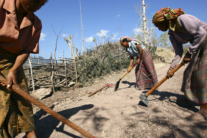 Timorese Women Work on UN Project