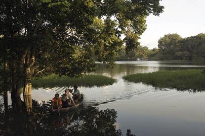 Floresta Nacional dos Tapajós, no Brasil. Foto: ONU/Eskinder Debebe