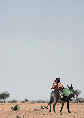 Young Girl Carries Water on Donkey