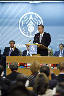 Secretary-General Addresses Global Food Security Summit