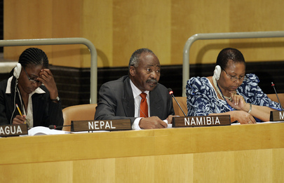 National Planning Director-General of Namibia Addresses ECOSOC Session
