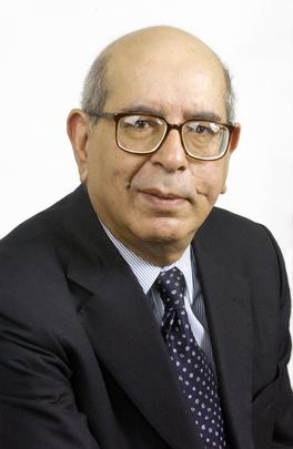 Portrait of Special Adviser of Secretary-General for Iraq