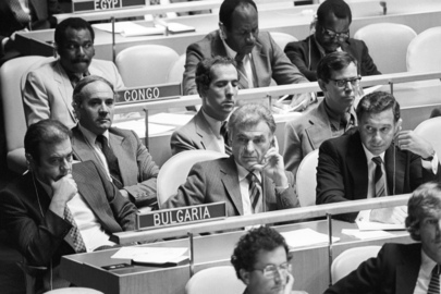 UN General Assembly's Thirty-Fifth Regular Session
