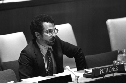Decolonization Committee Considers Question of East Timor