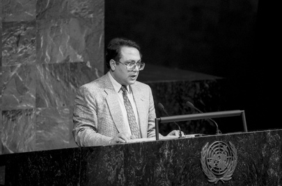 Acting Chairman of the Delegation of Azerbaijan Addresses 48th Session of General Assembly