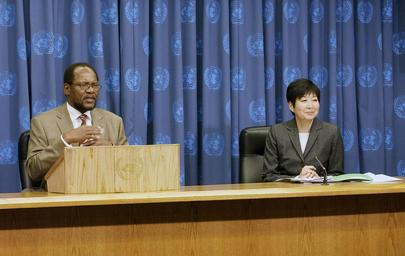 Press Conference by SRSG for Ethiopia and Eritrea