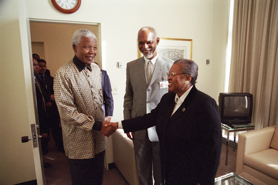 President of the Security Council Meets with Nelson Mandela