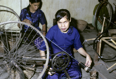 International Year of Disabled Persons (IYDP): 1981