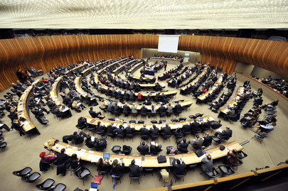 Human Rights Council Tenth Special Session Participants