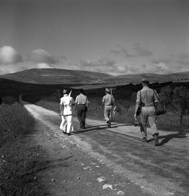 U.N. Truce Observers in Palestine