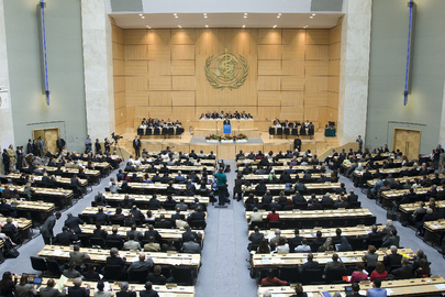 World Health Assembly Opens