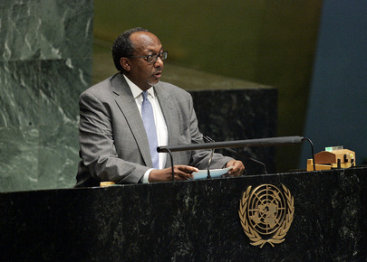 Representative of Djibouti  Addresses General Assembly on Financial Crisis