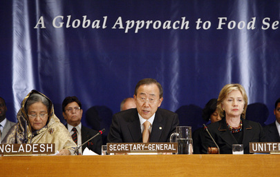 Secretary-General Addresses High-Level Meeting on Food Security- UN PHOTO # 413441