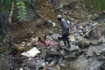 Food Shortages Persist in Port-au-Prince, Haiti