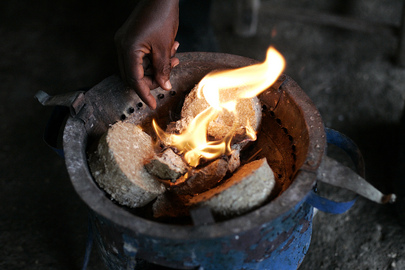 "Haiti ""Cash for Work"" Helps Produce Alternate Source of Cooking Fuel"