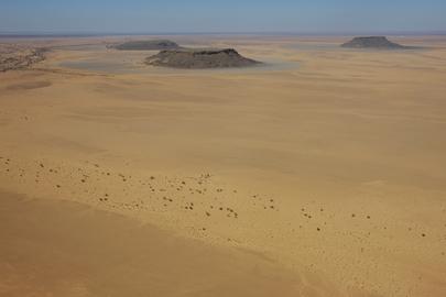 Western Sahara Landscape