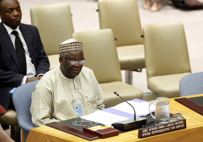 UNAMID Special Representative Briefs Security Council