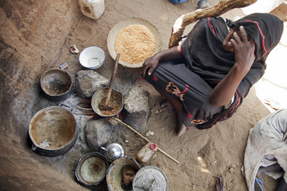 North Darfur IDP Camp Suffers Lack of Food and Water