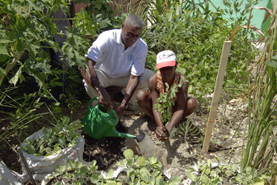 FAO Ambassador Carl Lewis Visits Haiti