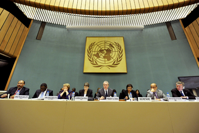 Executive Heads of UN Funds and Programmes Participate in ECOSOC Dialogue