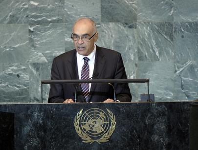 H.E. Mr.Mohamed Kemal Ali Amr