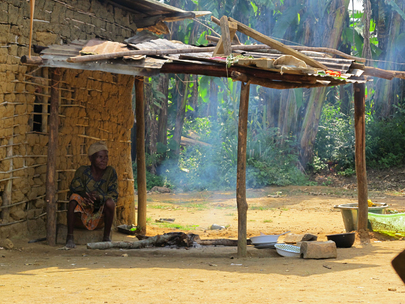 UNDEF Supports Census of Gabon Indigenous Group