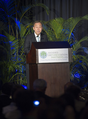 Secretary-General Speaks at Deforestation Event in Durban