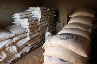 Drought and Rising Food Prices in Niger
