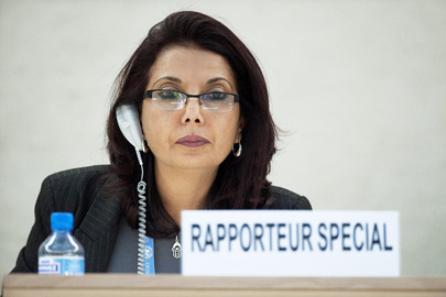 Special Rapporteur on Sale of Children and Child Prostitution Briefs Rights Council