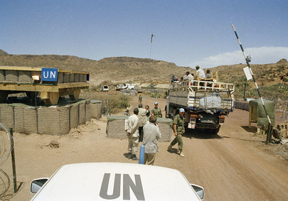 United Nations Mission in Eritrea and Ethiopia (UNMEE)