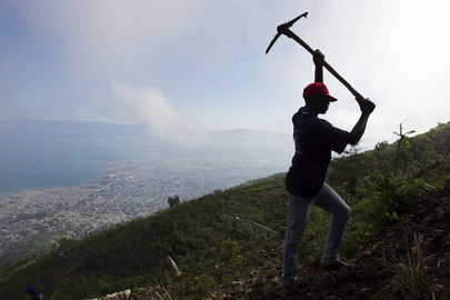 Haitians Plant and Save Land in Cash-for-Work Programme