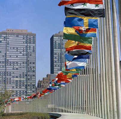 United Nations Members Flags United Nations Photo