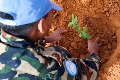 UNAMID Staff Plant Trees on World Environment Day