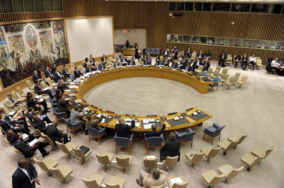 Security Council Expands 1540 Committee's Group of Experts
