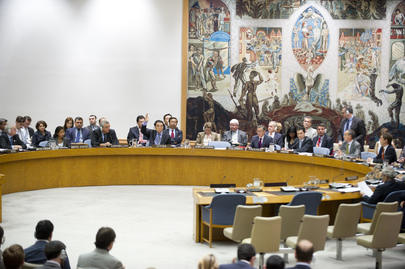 Security Council Votes on Draft Resolution on Syria
