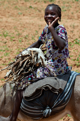 Farming in Volatile Gereida, South Darfur