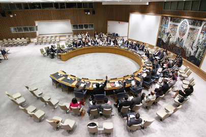 Security Council Extends Darfur Mission for One Year