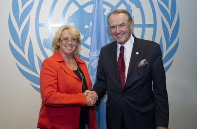 Deputy Secretary-General Meets Swedish Minister for the Environment