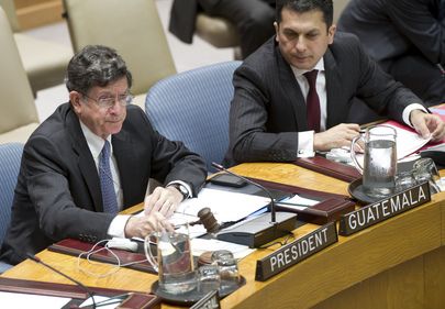 Security Council Considers Situation in Sierra Leone