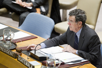 Security Council Extends UN Haiti Mission for One Year
